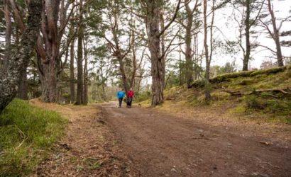 Wandern mit Hund Schottland
