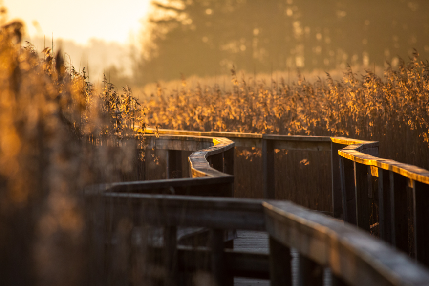 anders_tedeholm-accessible_nature-8160-10